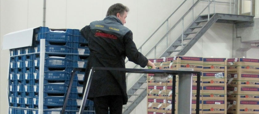 Immediately after unloading, the purchased vegetables are assessed on a range of quality characteristics