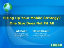 Sizing Up Your Mobile Strategy